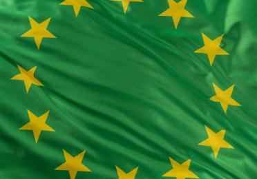 Drapeau Union européenne sur fond vert