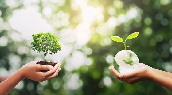 Protection de l'environnement et transition énergétique
